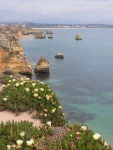 View of the blue Atlantic from a cliff. In the foreground, on the top of the cliff are blooming succulents, similar to iceplant. The flowers on the plants are light yellow. Below the cliff we see rocks poking up through the water and in the distance the land curves around to the right, showing that this is the edge of a bay. The water is aqua colored in the foreground, but gets darker in the distance and we can see dark sea plants in the water. It is a cloudy day.